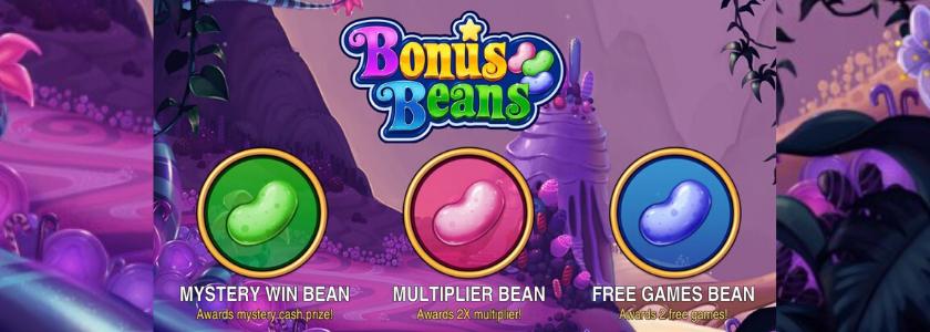 Bonus Beans 2